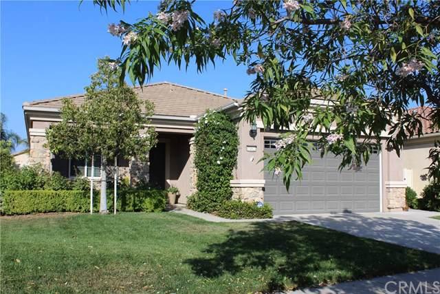 1462 Corte Alamonte, Hemet, CA 92545 (#SW19203097) :: Faye Bashar & Associates