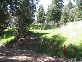 0 Cold Springs Rd, Cedarpines Park, CA  (#EV19203101) :: The Laffins Real Estate Team