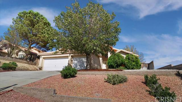 3540 Gold Crest Lane, Rosamond, CA 93560 (#SR19200024) :: Rogers Realty Group/Berkshire Hathaway HomeServices California Properties