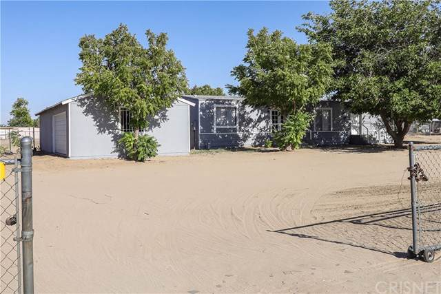 41044 177th Street E, Lancaster, CA 93535 (#SR19203185) :: The Laffins Real Estate Team
