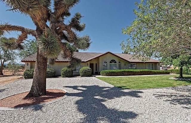 14673 Olive Street, Hesperia, CA 92345 (#TR19203403) :: The Laffins Real Estate Team