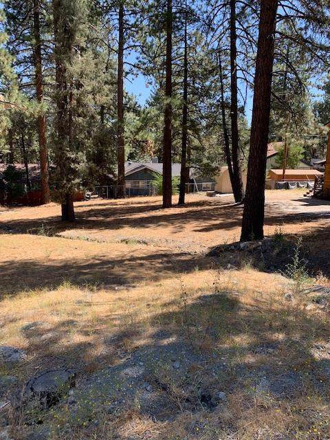 0 Lone Pine Canyon Road, Wrightwood, CA 92397 (#516954) :: Berkshire Hathaway Home Services California Properties