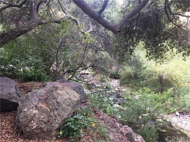 28591 Silverado Canyon Rd, Silverado Canyon, CA 92676 (#OC19149271) :: Keller Williams Realty, LA Harbor