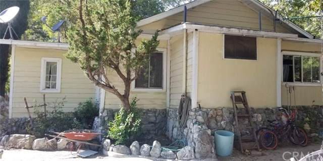 556 Stream Lane, Lytle Creek, CA 92358 (#IV19203875) :: RE/MAX Masters