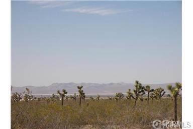 0 Buena Vista Rd., Pinon Hills, CA 92372 (#CV19204643) :: Fred Sed Group