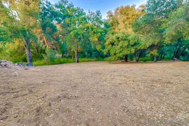 Echo Hills Rd, Descanso, CA 91916 (#190047610) :: RE/MAX Empire Properties