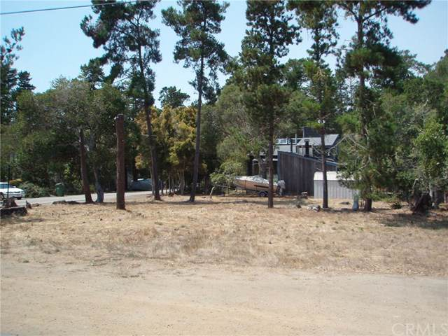 1213 Warren Road - Photo 1