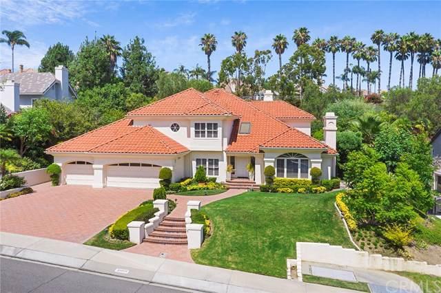 25591 Rapid Falls Road, Laguna Hills, CA 92653 (#OC19204345) :: The Marelly Group | Compass