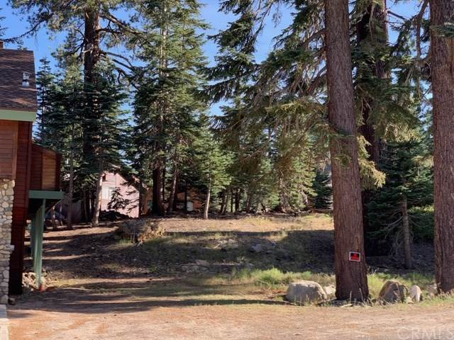 1593 Forest Trail, Mammoth Lakes, CA  (#PI19205184) :: J1 Realty Group