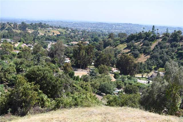 2417 Ardsheal Drive, La Habra Heights, CA 90631 (#WS19142127) :: Fred Sed Group