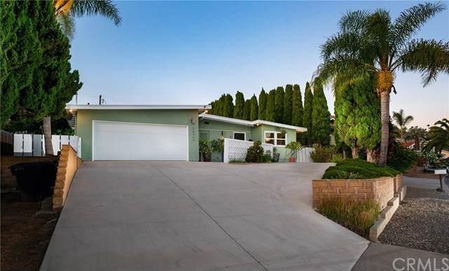 34240 Camino El Molino, Dana Point, CA 92624 (#OC19205831) :: Z Team OC Real Estate