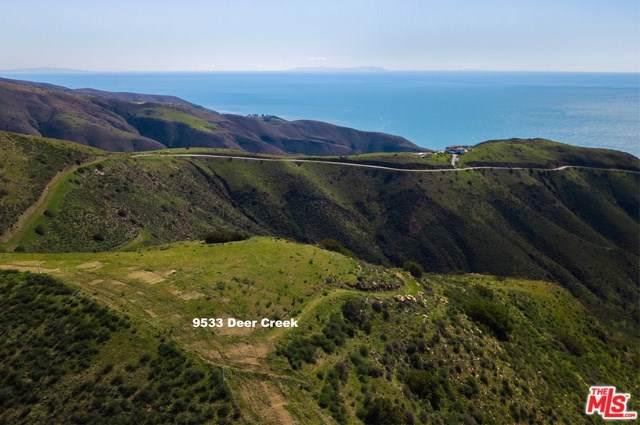 9533 Deer Creek Road, Malibu, CA 90265 (#19502656) :: Harmon Homes, Inc.