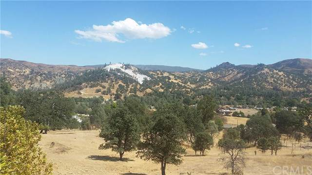2644 Indian Hill Road, Clearlake Oaks, CA 95423 (#LC19206418) :: Allison James Estates and Homes