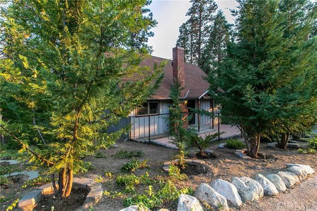 25402 Lodge Road, Idyllwild, CA 92549 (#SW19206422) :: J1 Realty Group