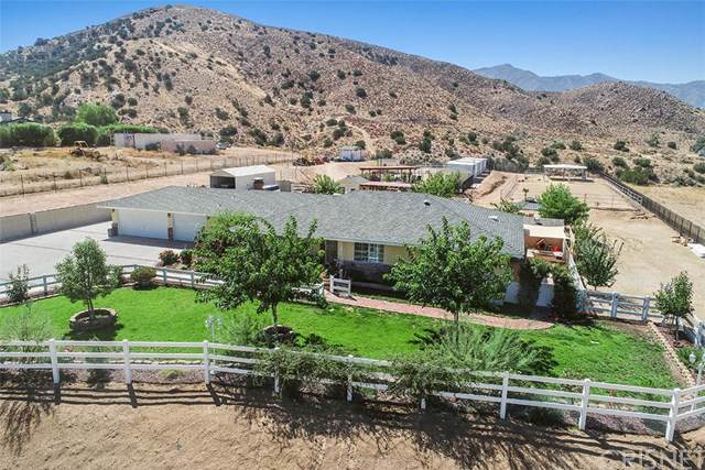 3242 Country Way, Acton, CA 93510 (#SR19207143) :: The Ashley Cooper Team