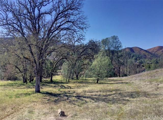 3105 Wolf Creek Road, Clearlake Oaks, CA 95423 (#LC19207904) :: Legacy 15 Real Estate Brokers