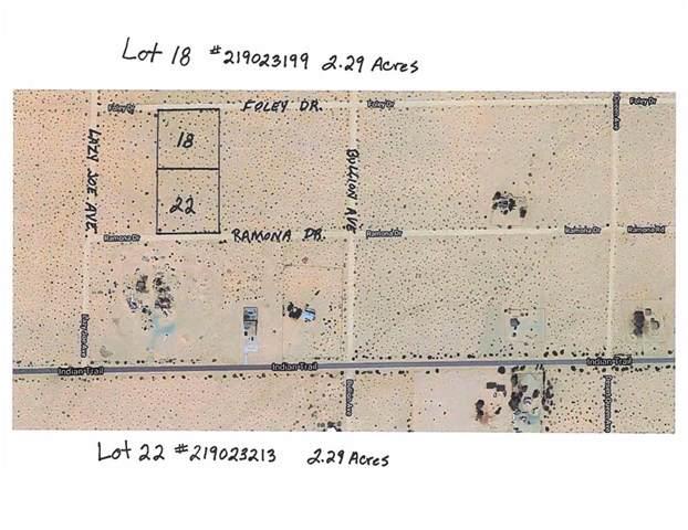Foley Drive, 29 Palms, CA 92277 (#219023199DA) :: J1 Realty Group