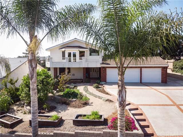 1033 Acorn Drive, Arroyo Grande, CA 93420 (#SC19208037) :: Cal American Realty