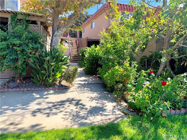 31006 Calle San Diego - Photo 1