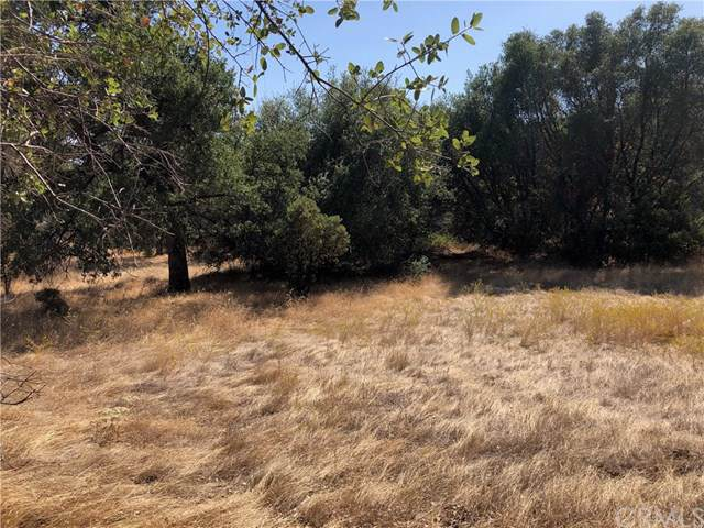 0 Indian Peak Road, Mariposa, CA 95338 (#MP19207645) :: Allison James Estates and Homes