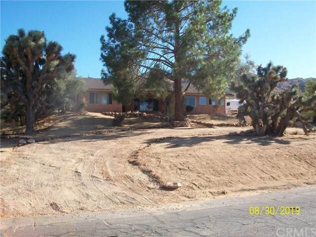 61059 Navajo Trail, Joshua Tree, CA 92252 (#JT19209590) :: Allison James Estates and Homes