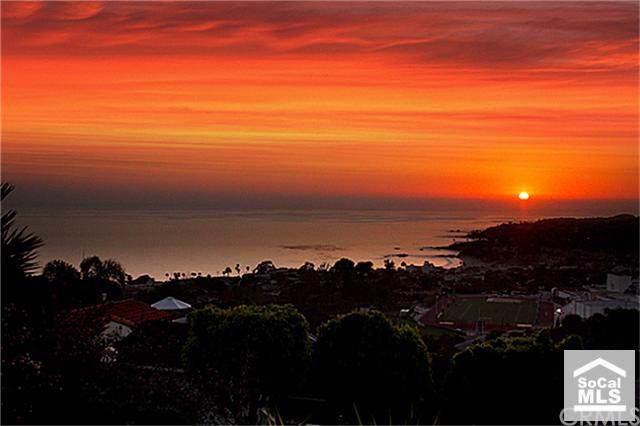 950 Canyon View Drive, Laguna Beach, CA 92651 (#LG19209871) :: Doherty Real Estate Group