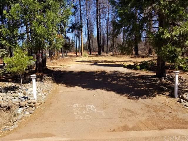 13812 Park Drive - Photo 1
