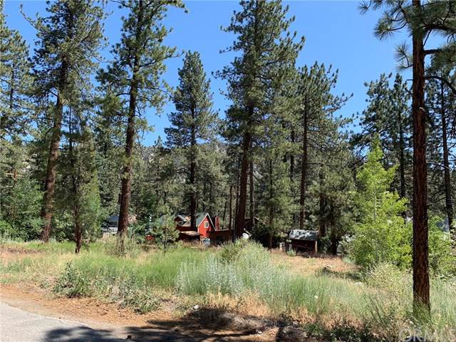 0 Edna Street, Wrightwood, CA 92397 (#TR19178480) :: Fred Sed Group