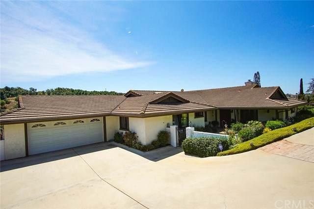 3135 Canonita Drive, Fallbrook, CA 92028 (#OC19211211) :: Allison James Estates and Homes