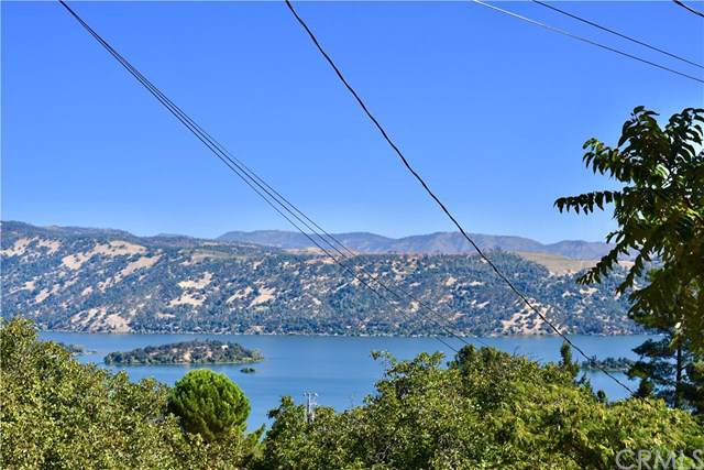 3587 Riviera West Drive, Kelseyville, CA 95451 (#LC19211358) :: The Brad Korb Real Estate Group