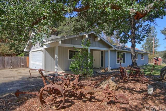 54234 White Oak Place, North Fork, CA 93643 (#FR19211479) :: Twiss Realty
