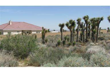 0 138Fwy/Oasis, Pinon Hills, CA  (#SB19211556) :: Fred Sed Group
