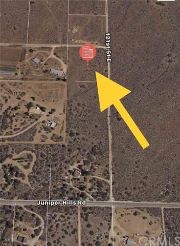 121 Vac/121 Ste/Vic Juniper Hills Road, Juniper Hills, CA 93543 (#IV19211874) :: The Parsons Team
