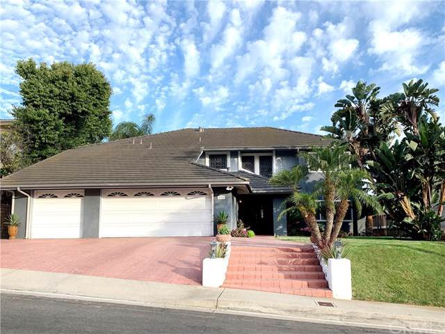 3815 Via Manzana, San Clemente, CA 92673 (#OC19188609) :: Allison James Estates and Homes