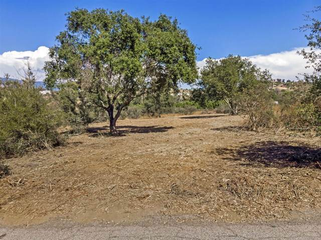 15241 Cool Valley Rd, Valley Center, CA 92082 (#190049402) :: Blake Cory Home Selling Team