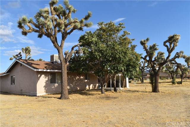 6546 Prescott Avenue, Yucca Valley, CA 92284 (#JT19212988) :: RE/MAX Innovations -The Wilson Group