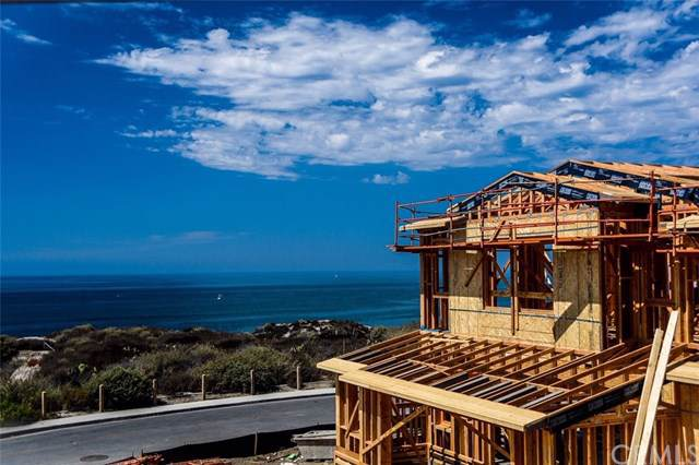 131 Via Artemesia, San Clemente, CA 92672 (#OC19213974) :: Allison James Estates and Homes