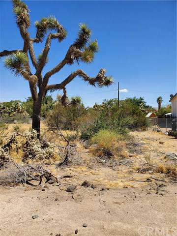0 Cholla, Yucca Valley, CA  (#JT19213937) :: RE/MAX Masters