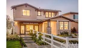399 Ventasso Way, Fallbrook, CA 92028 (#SW19214339) :: Allison James Estates and Homes