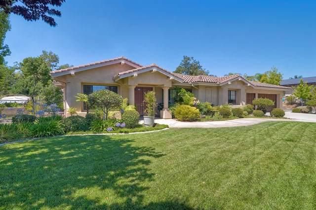 3218 Staghorn Court, Fallbrook, CA 92028 (#190049942) :: Brandon Hobbs Group