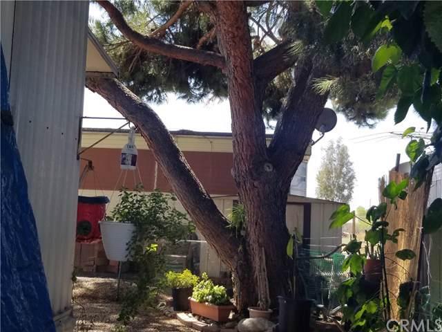 950 California Street #38, Calimesa, CA 92320 (#EV19215600) :: A|G Amaya Group Real Estate