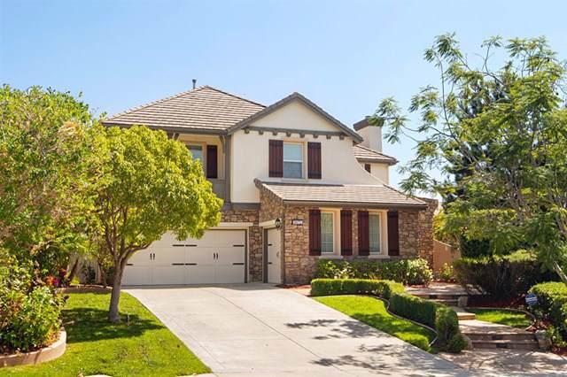 8072 Avenida Secreto, Carlsbad, CA 92009 (#190050280) :: Brandon Hobbs Group