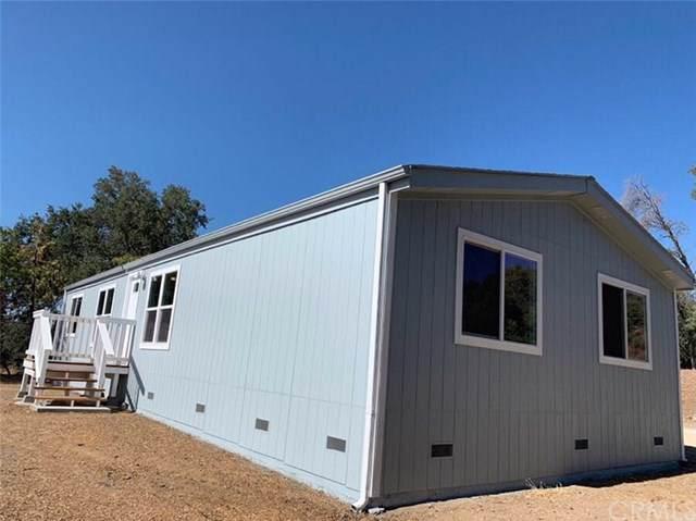 46622 Comstock Drive, Coarsegold, CA 93614 (#FR19217122) :: Allison James Estates and Homes