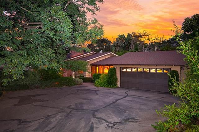 4351 Mayapan Dr, La Mesa, CA 91941 (#190050541) :: Steele Canyon Realty
