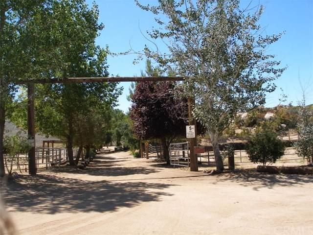 51441 Tule Peak Road, Aguanga, CA 92536 (#SW19214510) :: The Najar Group