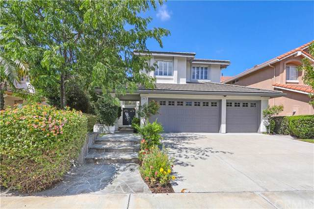 24631 Monita Circle, Laguna Niguel, CA 92677 (#OC19216733) :: Allison James Estates and Homes
