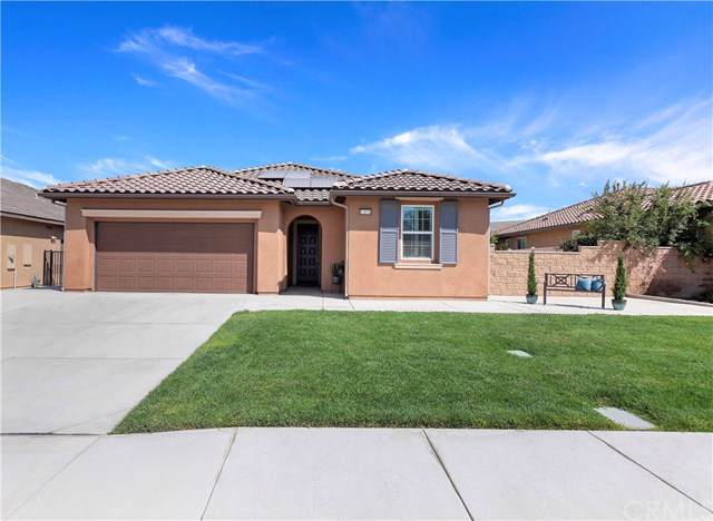 12070 Geode Street, Jurupa Valley, CA 91752 (#PW19218204) :: The Danae Aballi Team