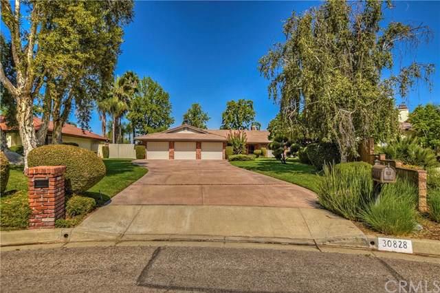 30828 La Solana Court, Redlands, CA 92373 (#EV19216517) :: Allison James Estates and Homes