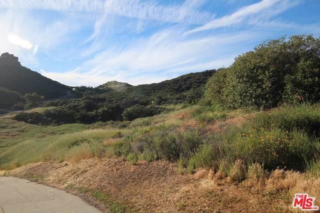 32256 Mulholland Highway, Malibu, CA 90265 (#19510136) :: Berkshire Hathaway Home Services California Properties
