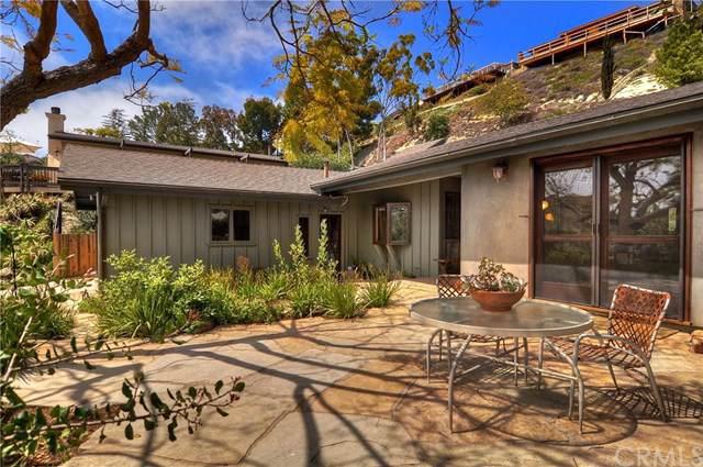 3161 Bern Drive, Laguna Beach, CA 92651 (#LG19200139) :: Fred Sed Group